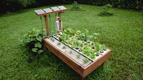 Growbot garden robot w ai plant recognition robotic